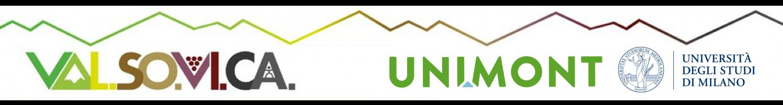 VALSOVICA – Unimont